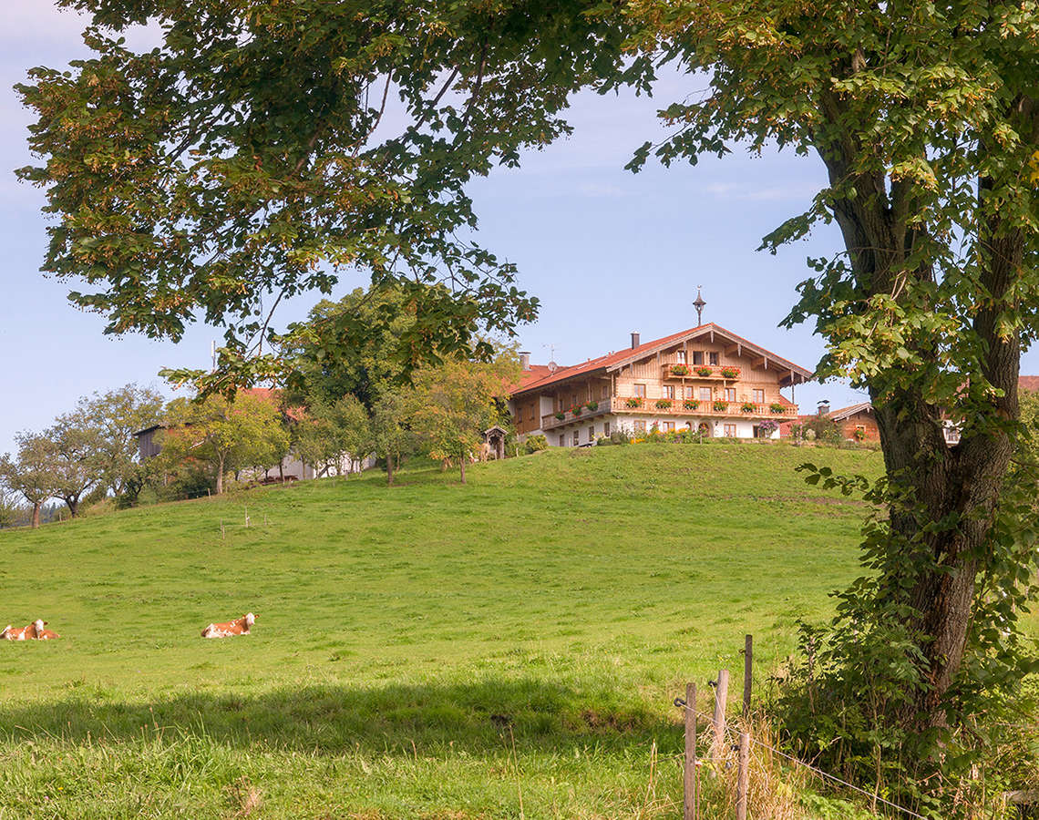 Bauernhof Urlaub Piding