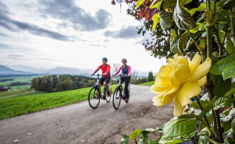 Bodensee Koenigssee Radweg Piding
