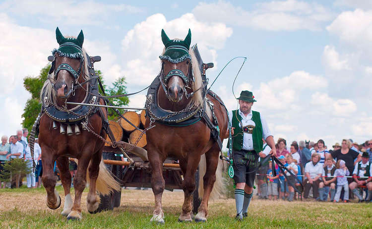Tradition Pferde Reitergruppe Rupertiwinkel