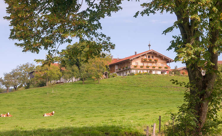 Bauernhof in Piding
