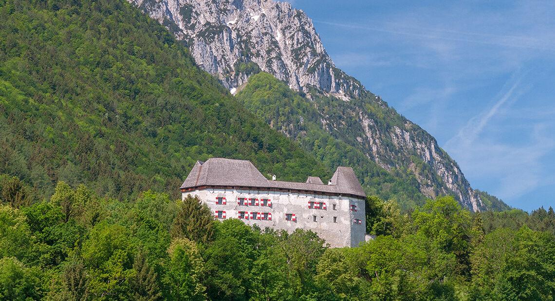 Piding Staufeneck Schloss Hochstaufen Fruehling 1