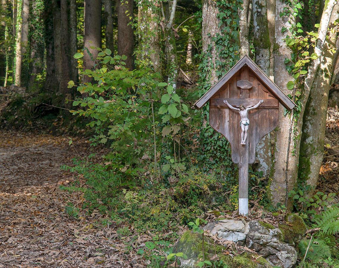 Wandern Wegkreuz Piding Wald Weg